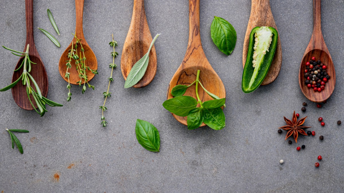 Ideal Culinary Herbs to Grow in Small Spaces