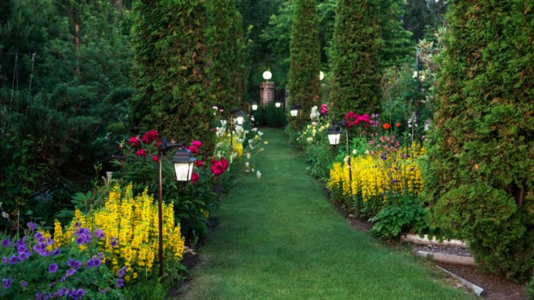 4 Simple Tips for Creating a Beautiful Home Garden